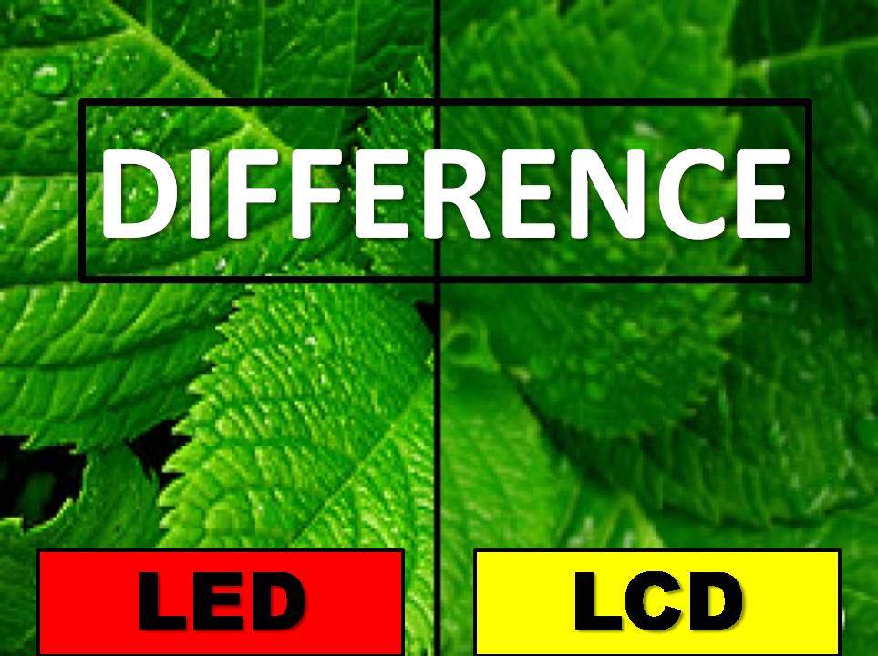 What is the Difference Between LCD and LED TVs